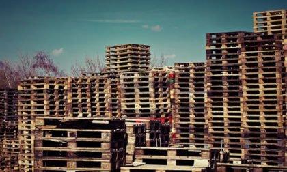 IT-gestützte Beschaffungsmanagement Baustoffhändler Rösch Unternehmensberatung